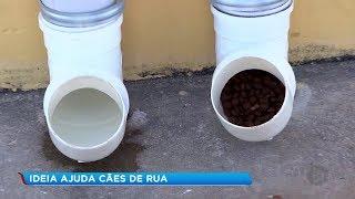 Ideia criativa ajuda na alimentação de animais de rua em Sorocaba