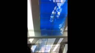 Gökyüzü <br> Asma Tavan