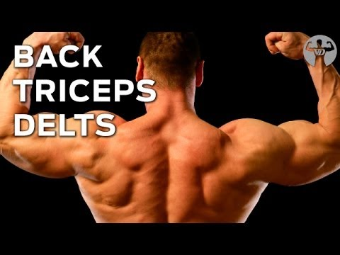 8-8-16 Day3 Muscle Building Workout, Back, Triceps, Deltoids…