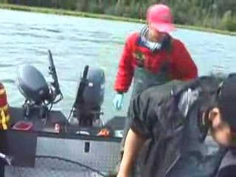 RFID Fishing Hat: Kenai River King Salmon (E01200070126A860)