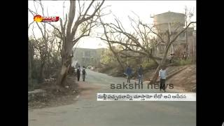 Hudhud Cyclone : Beauty Of Andhra University Damaged With The Mishap