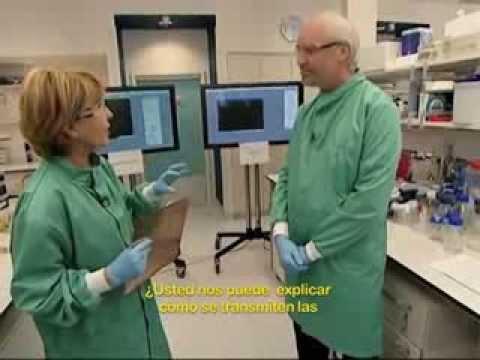 Demostración en Vivo del Cobre Antimicrobiano