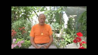 Paul Renner of Peaceful Gardens: His Life Changing Discovery