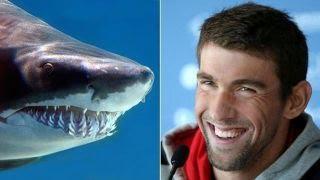 'Shark Week' backlash after simulated shark race