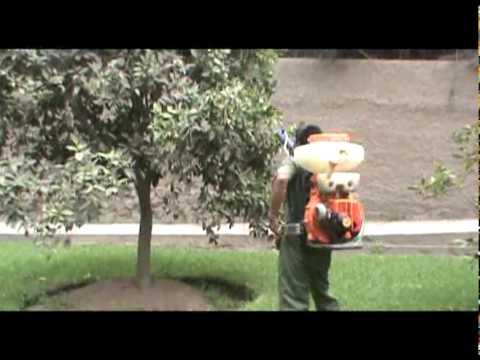 Fumigación de árboles frutales