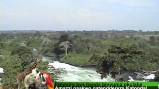 Uganda Zaabu-Ebiyiriro Itanda Binyuma Okulaba