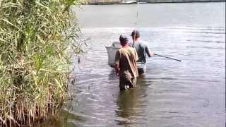 что сейчас ловят на реке кубань