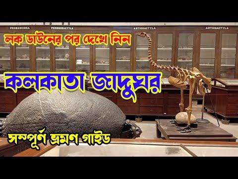 INDIAN MUSEUM KOLKATA TOUR | ইন্ডিয়ান মিউজিয়াম ভ্রমণ | Kolkata Museum reopen | Indian Museum