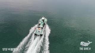 7월1일 양양 조도포인 조도다이빙