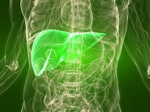 Liver Disorders: Cause and Solution