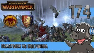 Beastmen vs Bretonnia Total War: Warhammer Multiplayer Ranked Quick Battle with live commentary. The Total War Warhammer ...