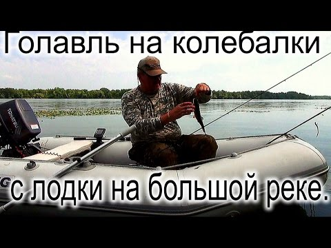 голавль в проводку с лодки