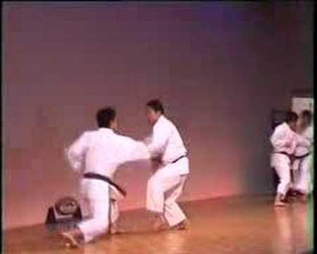 Yakusoku Kumite
