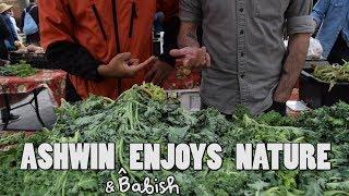 Ashwin Enjoys Nature - Foraging with Babish (feat. Binging with Babish)