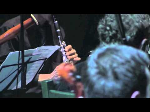 Prokofiev Peter and the Wolf Cat Themes