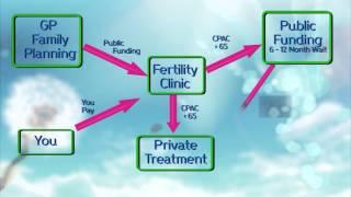 Infertility in NZ Framework Video