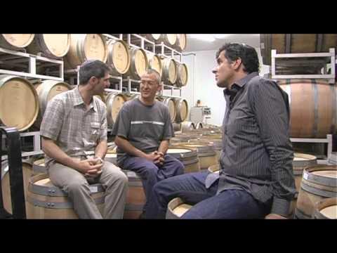 Shiloh Winery 1