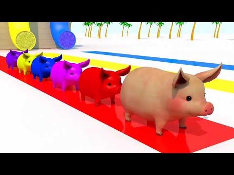 Con Lợn Éc 🎶 Chú Thỏ Con 🎶 Chú Mèo Con | Nhạc Hay Sôi Động Vui Nhộn