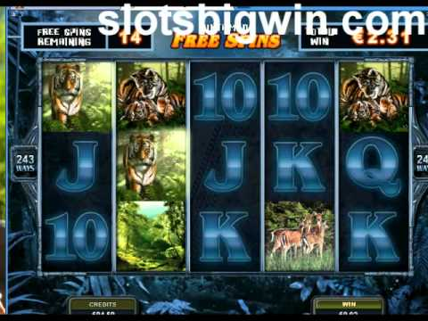 Untamed Bengal Tiger video slot: Lucky Nudge feature