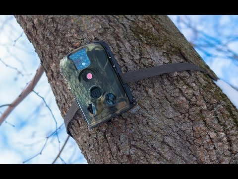 LTL Acorn 5210A Trail Camera