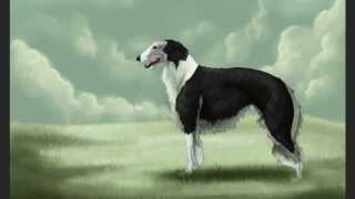Borzoi Speed Painting - Time Lapse Digital Art