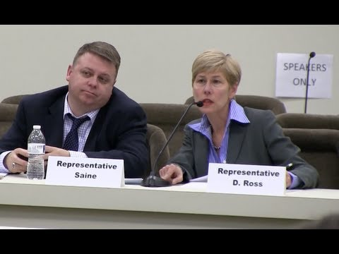 Voter ID: NC Rep. Deborah Ross Questions Bob Hall of Democracy North Carolina