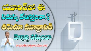 How to Prevent Urinary Infection   Inflammation in Urine   Dr Manthena Satyanarayana Raju Videos