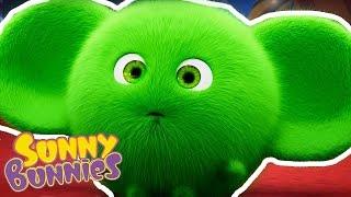Video Sunny Bunnies - Halloween Compilation - Funny Cartoons for Children MP3, 3GP, MP4, WEBM, AVI, FLV September 2018