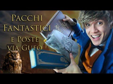 Pacchi Fantastici e Poste via Gufo!! - Review Bacchetta (e sciarpa) di Newt Scamander