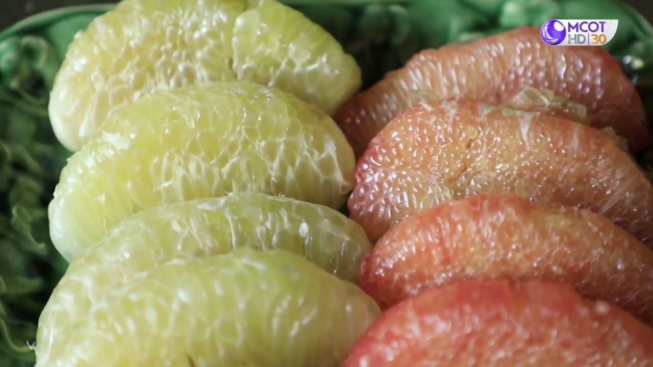 แปลงใหญ่ส้มโอดอนแฝก ต.ดอนแฝก อ.นครชัยศรี จ.นครปฐม