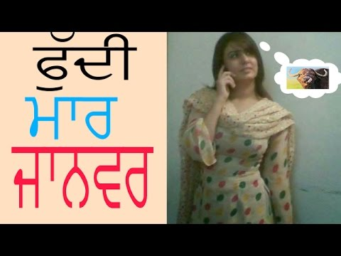 Video ਮੈਂ ਬੁੰਡ ਮਾਰ ਜਾਨਵਰ ਬੋਲਦਾ , punjabi funny non veg talk download in MP3, 3GP, MP4, WEBM, AVI, FLV January 2017