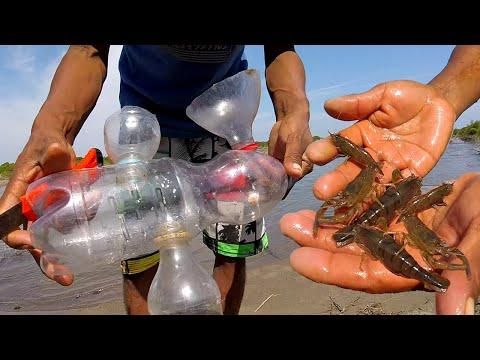 Videos caseros - NUEVO MÉTODO  Para Pescar Grandes Camarones Con Botella Reciclable - Pesca De Camarones