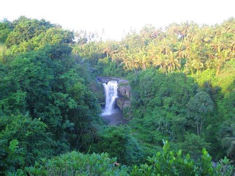 Водопад  на Бали. Чудная природа Индонезии.