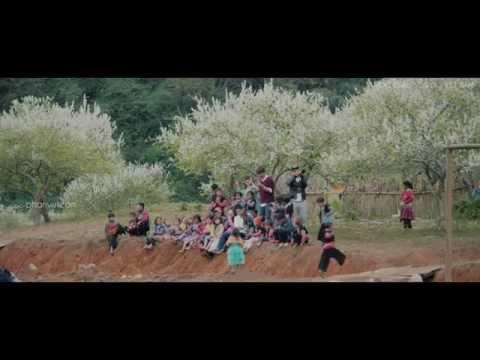 Mộc Châu- Mùa hoa mận trắng
