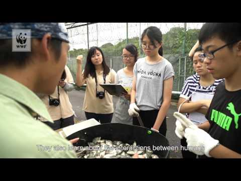 Discovering Biodiversity In Hong Kong Wetlands
