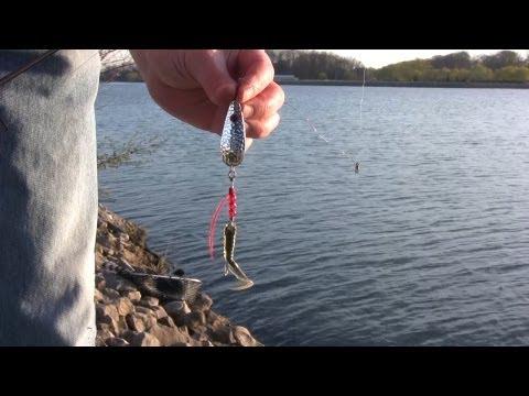 новый берег рыбалка