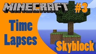 Skyblock Time lapse #3
