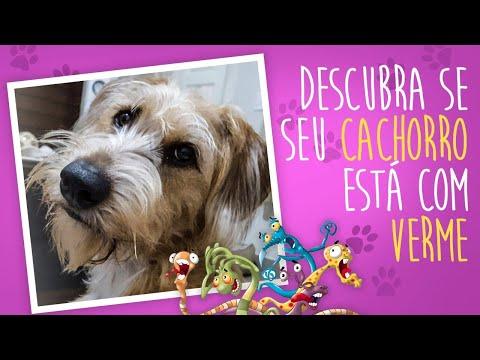 video-youtube