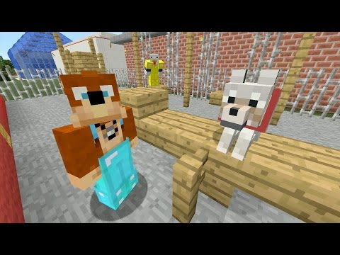 Minecraft Xbox – Playground [241]