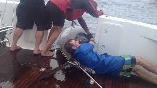 Woman reels in HUGE Tuna Fish catch in New Zealand