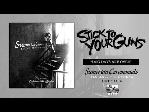 Stick To Your Guns - Dog Days Are Over lyrics