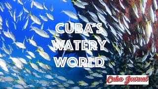 From the amazing Gardens of the Queen archipelago to the beaches of the Bay of Pigs, Cuba's watery world awaits your visit. Please subscribe to the channel. ...
