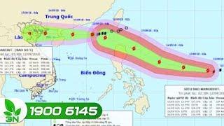 Nông nghiệp | Siêu bão Mangkhut nối đuôi bão số 5 Barijat dồn dập vào Biển Đông