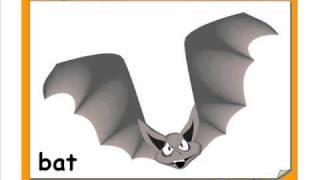 Halloween Vocabulary, Videos for beginners