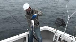 太刀魚ジギング爆釣。伊勢湾伊良湖