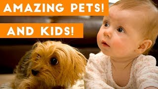 Video Most Amazing 1 Hour of Cute Kids And Pets 2018 | Funny Pet Videos! MP3, 3GP, MP4, WEBM, AVI, FLV Januari 2019