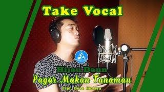 Video Hijau Daun Pagar Makan Tanaman [Take Vocal] MP3, 3GP, MP4, WEBM, AVI, FLV Desember 2018
