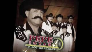 Video Pepe Tovar y Los Chacales - Piensa Morena MP3, 3GP, MP4, WEBM, AVI, FLV Mei 2019