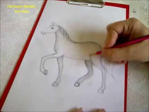 Zeichnen lernen für Anfänger. Pferd malen.  Pferdeportrait. Pferdemalerei.