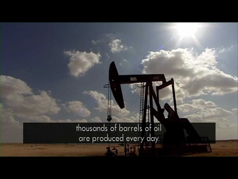 Watch: Shell Oman: a natural way to filter water